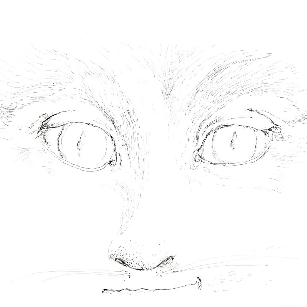 visage 5 chat