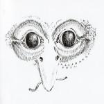visage oiseau002